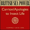 Carrion / Apologies To Insect Life